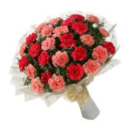 Bunch of carnations